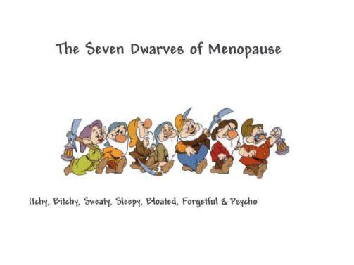 seven-dwarfs-of-menopause