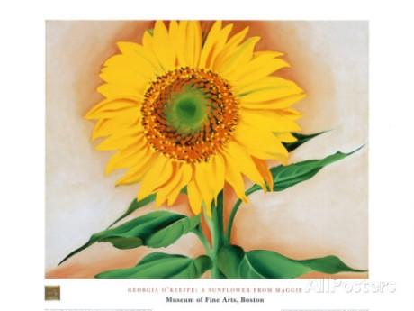 georgia-o-keeffe-sunflower