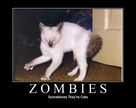 zombiecat