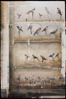 larslerin-birds