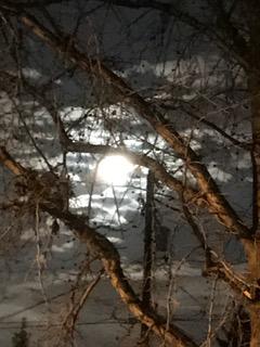 moon02112017