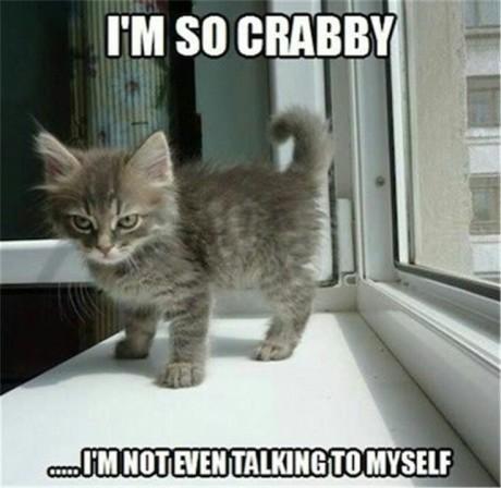I'mSoooCrabby