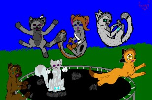 Trampoline_cats_by_Foggy_cat
