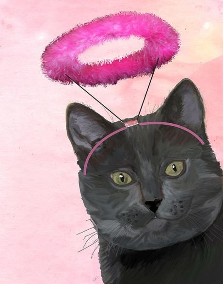 cat-with-pink-halo-kelly-mclaughlan